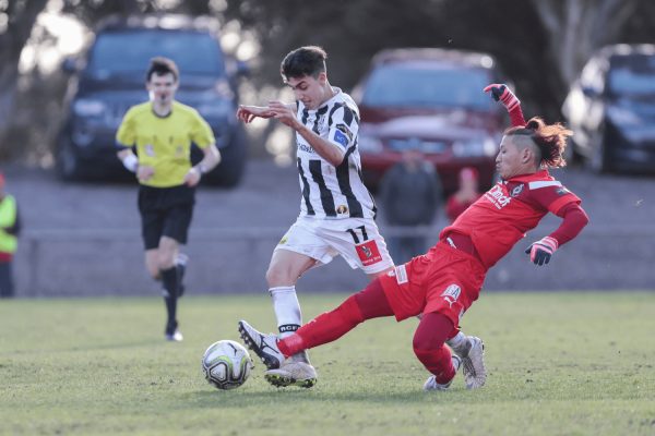National Premier League SA - Grand Final Match Preview