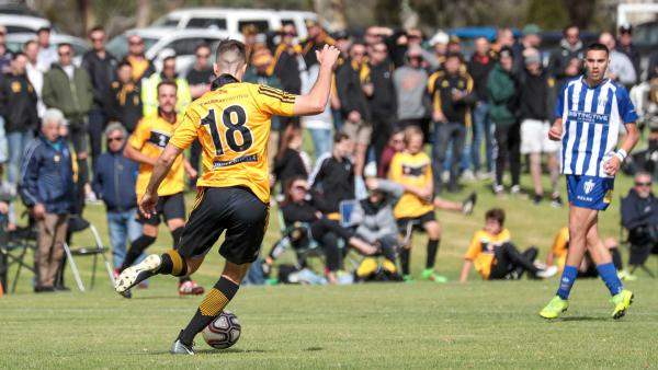 Tea Tree Gully ffa cup